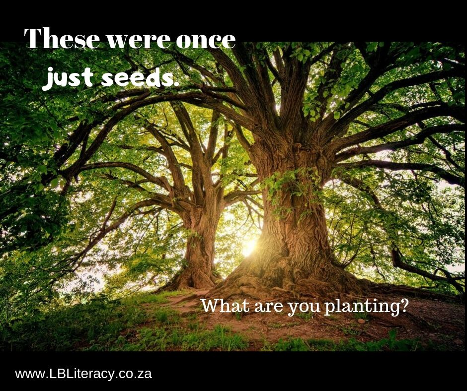 These were once just seeds. What are you planting? www.LBLiteracy.co.za